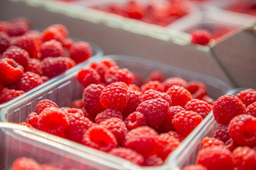 Raspberries from Ukraine Farm 1